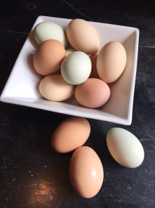 Beautiful eggs